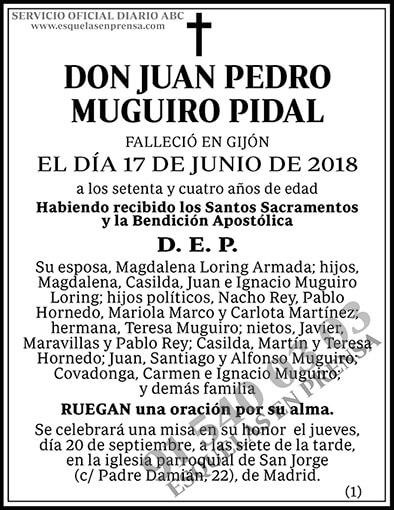 Juan Pedro Muguiro Pidal